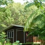 Onze lodge tussen de palmbomen