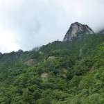 Gele berg