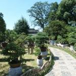 Administrator Garden