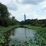 Nanjing meer